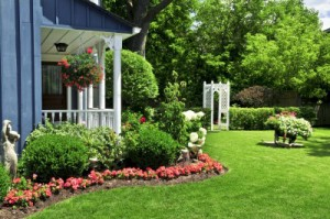 Lawn Services Carrollton