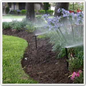 Irrigation Design
