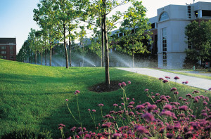 Cost of Lawn Irrigation
